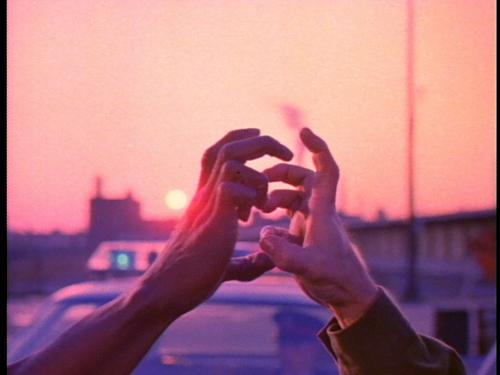 still_talons_handshake