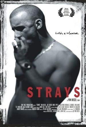 mp_strays